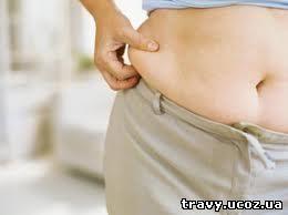 как сбросить лишний вес питание